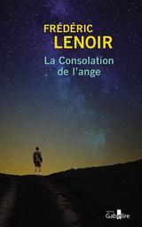La consolation de l'ange / Frédéric Lenoir | Lenoir, Frédéric (1962-....). Auteur