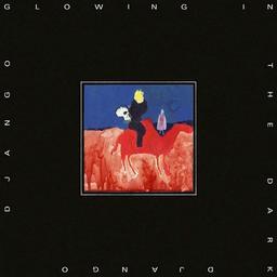 Glowing in the dark / Django Django, ens. voc. & instr. | Django Django. Musicien. Ens. voc. & instr.